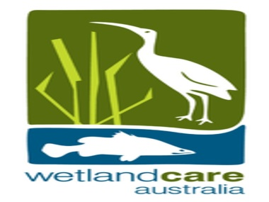 WetlandCare Australia National Art and Photography Competition now open