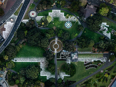 SKIN & BONES MAP THE GARDEN PALACE